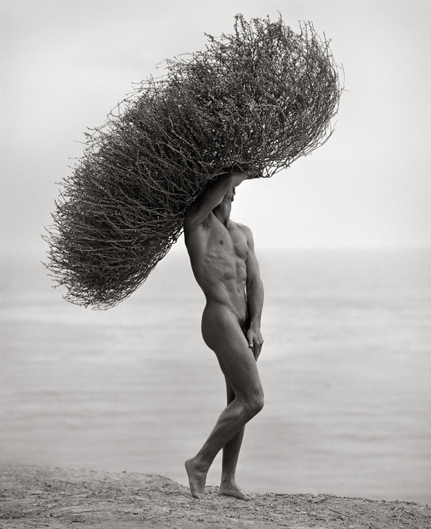 HERB RITTS Male Nude With Tumbleweed, Paradise Cove 1986_tn